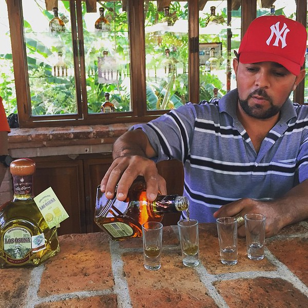 Go tequila tasting at Vinata Los Osuna | Things to do in Mazatlan, Mexico