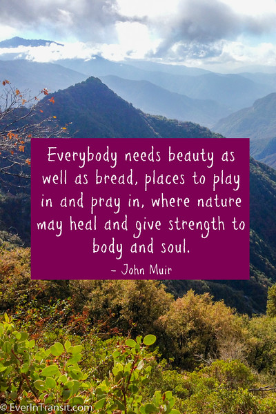 """Everybody needs beauty as well as bread, places to play in and pray in where nature may heal and give strength to body and soul"" - John Muir Quotes"