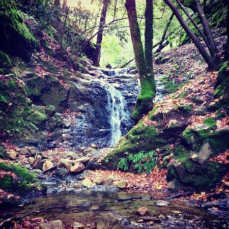 Winter waterfalls at Uvas Canyon Park west of Morgan Hill, CA.